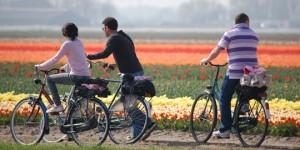Rambu Lalu Lintas bagi Pesepeda di Belanda